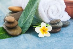Online Health Shop Dr. Maryam Acupuncture and Chinese Medicine
